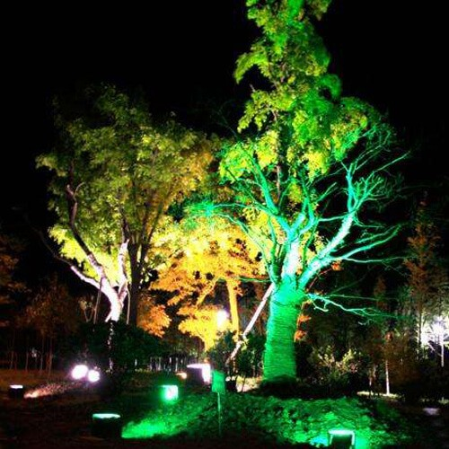 exterior led spot lights for tree